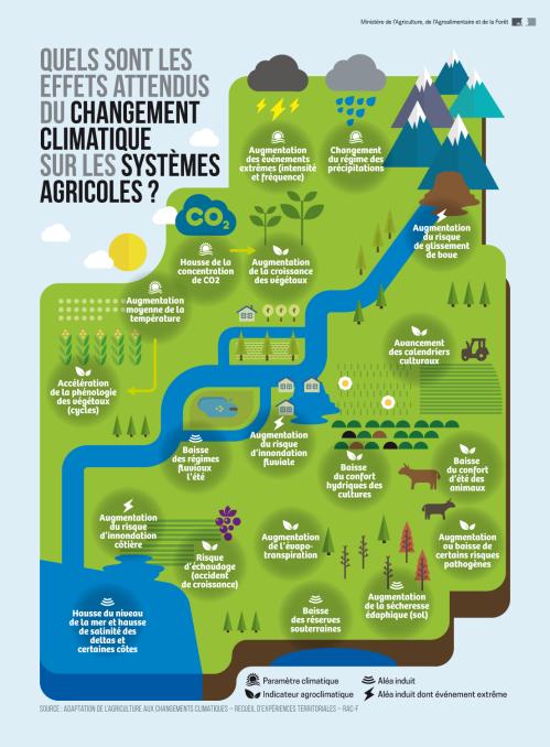 infographie_changement_climatique